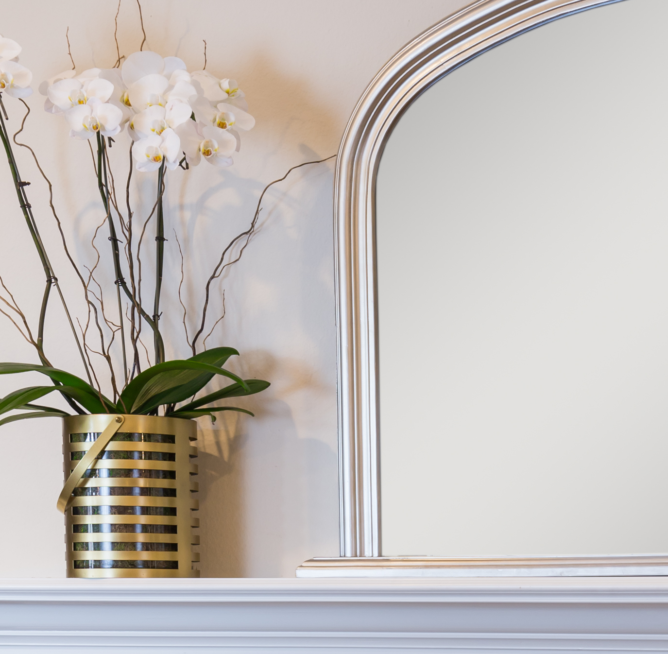 orchids on mantle